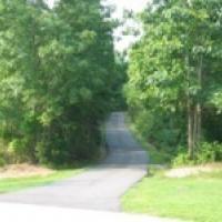 Trail at Flaherty Park