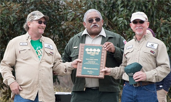 Three Men Accepting an Award for The Tree Line USA