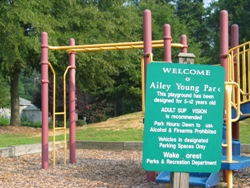 Welcome to Ailey Young Park