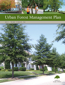 Cover of Urban Forest Mgt Plan